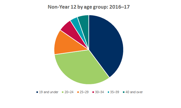 Pie chart showing breakdown of non-year 12 applicants by age group 2016-2017