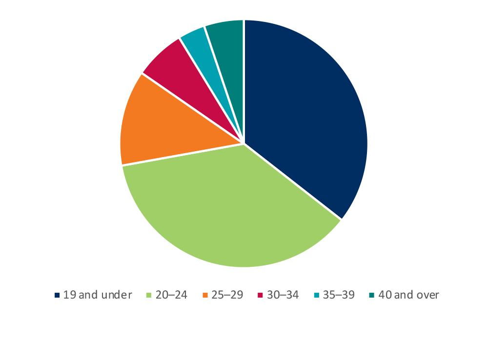 Age analysis pie chart